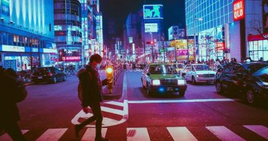 Comment les assureurs-vie japonais domptent les taux bas depuis 20 ans