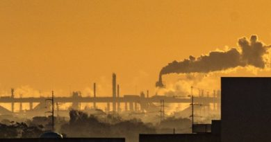 Pétrole de schiste : vers l'indépendance énergétique des Etats-Unis ?