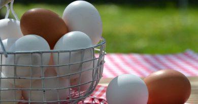 œuf panier