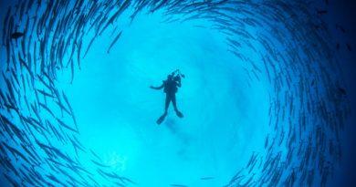 ocean plongee