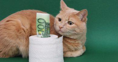 Rechute de l'économie: toujours plus de dettes et de fausse monnaie