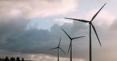 Bourse : une bulle sur les énergies renouvelables ?
