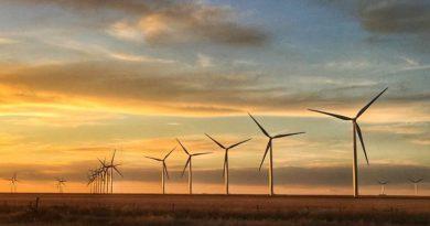 Mesures écologistes et développement économique, sont-ils antinomiques ?