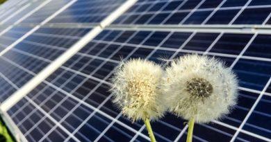 Energies renouvelables ? Une vaste blague !