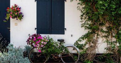 En quoi les attentes immobilières des Français ont-elles changé ?
