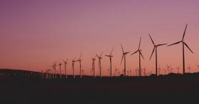 Les éoliennes consomment parfois plus qu'elles ne produisent